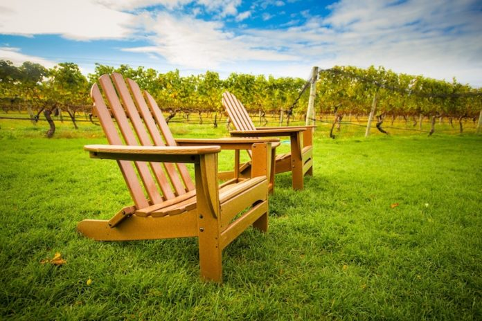 two empty chairs at hamptons vineyard ny