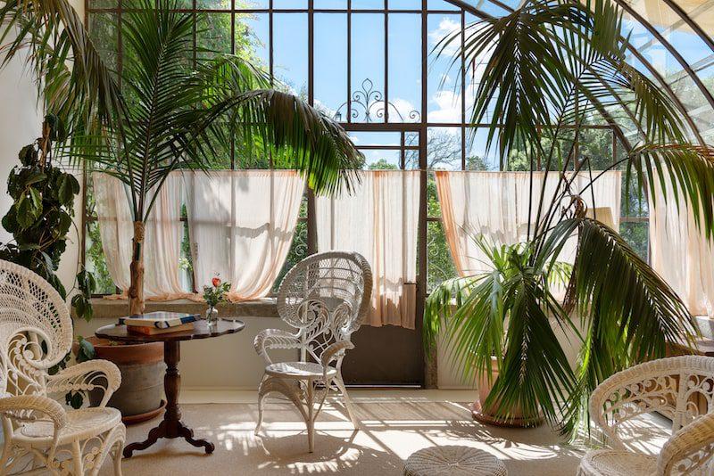 Il Salviatino Greenhouse italy tuscany