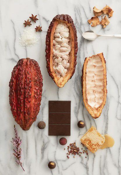 wellness cacao pod vosges haut-chocolat