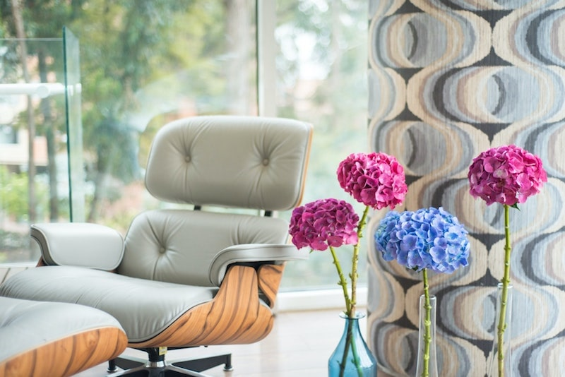 hydrangeas pink and blue stems in office with chair