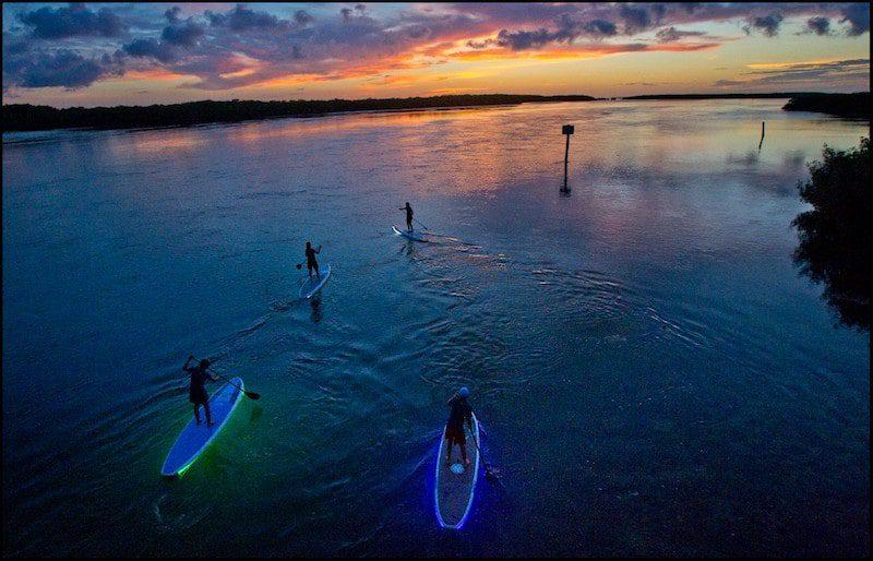 key largo paddleboarding