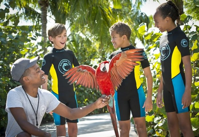 children with parrot at atlantis bahamas family friendly activities tropical escape | East End Taste Magazine