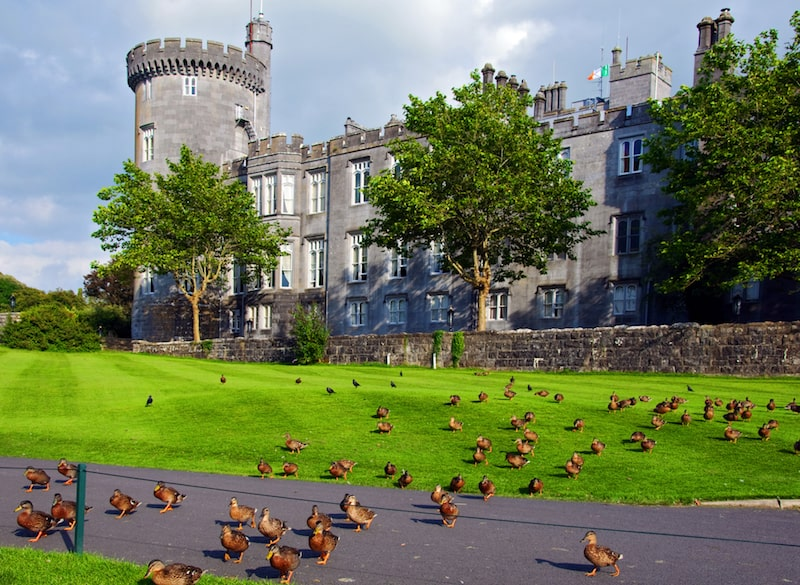 dromoland castle ireland with ducks