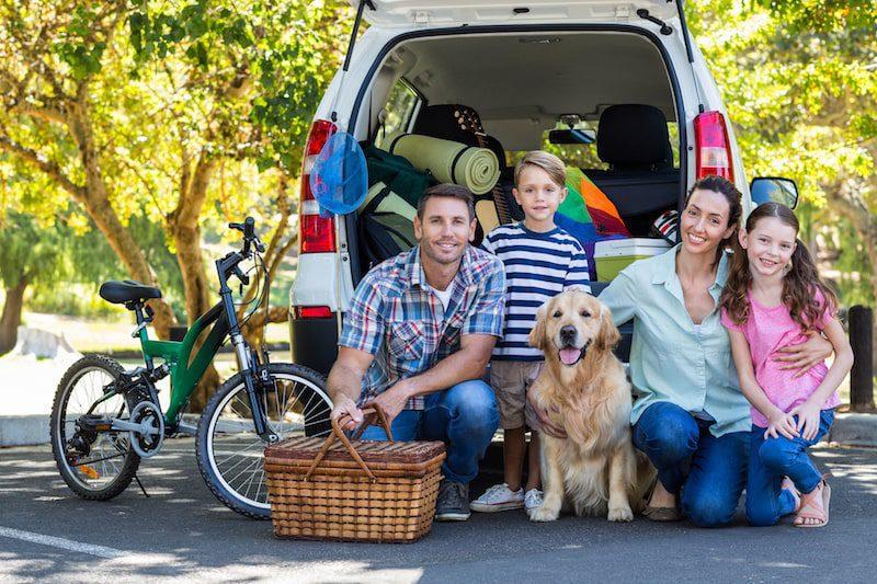 family fun travel with dog bike picnic basket road trip
