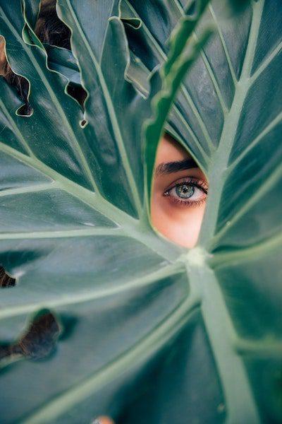 beautiful blue woman eye looking through large green leaf