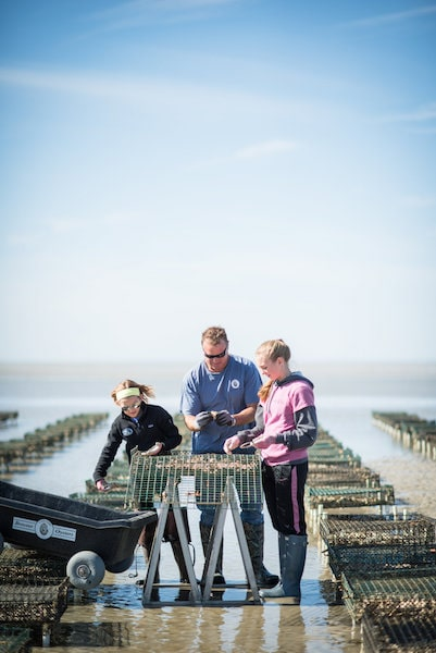 world oceans day oyster tour