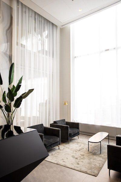 modern living room natural light tall windows