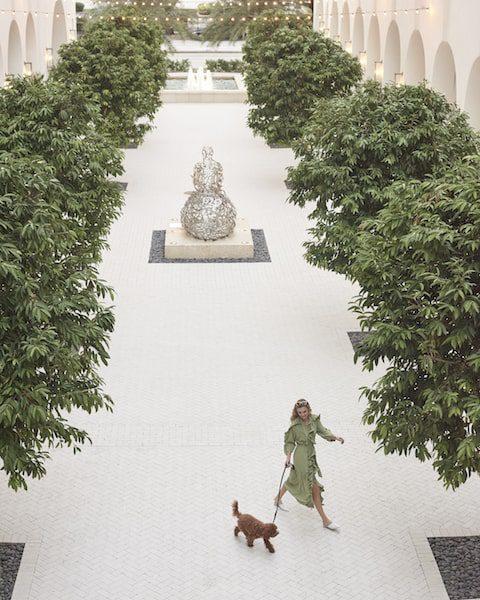 thesis hotel miami pet dog friendly