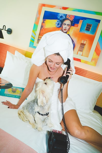 foxy south beach pampered pup package