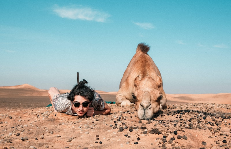 woman crouching with camel in abu dhabi