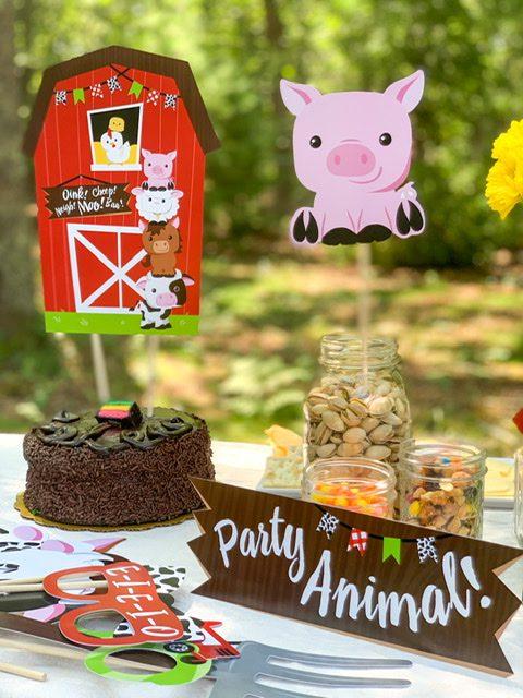 big dot of happiness children birthday party farm animals
