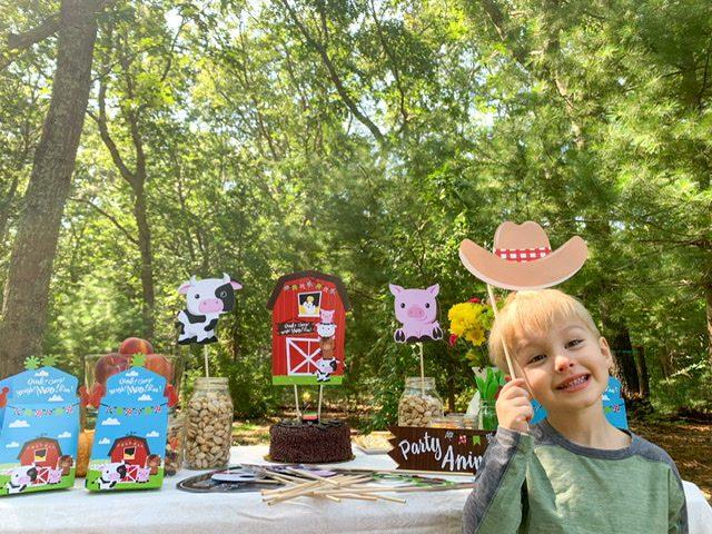benjamin gordon birthday party farm animals