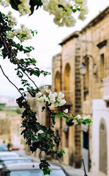 gozo malta non touristy travel